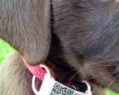 Pet Collar Band - External Microchip