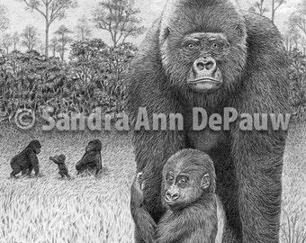 Animal Family - Gorilla