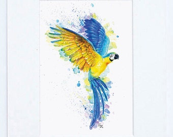 Blue and Gold Macaw Vibrant Fine Art Bird Print