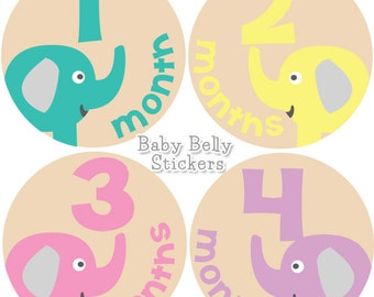 Baby Month Stickers, Monthly Baby Stickers, Bodysuit Stickers, Monthly Stickers, Baby Monthly Stickers, Baby Belly Stickers