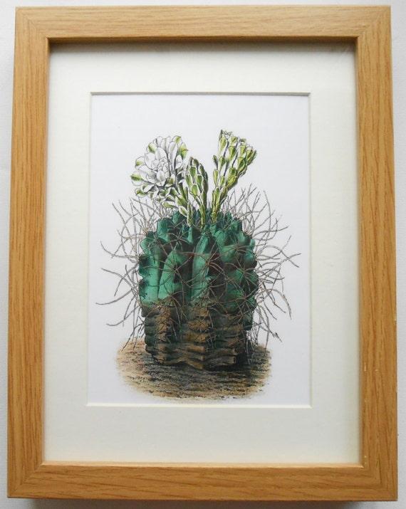 247 print with frame home decor wall hanging botanical