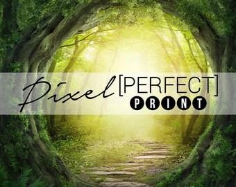 "6ft x 6ft ""Enchanted Forest"" Vinyl Backdrop // Vinyl Backdrops // Vinyl Photography Backdrop // Scenic and Themed Backdrops (PP186)"