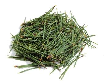 50 g Dried Organic Pine needles,(Pinus sylvestris) healing herb