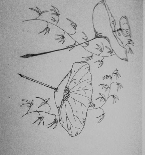 Articoli simili a matita disegno di fiori di loto su etsy for Disegni di fiori a matita