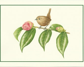 Set of 4 Winter Wren Cards