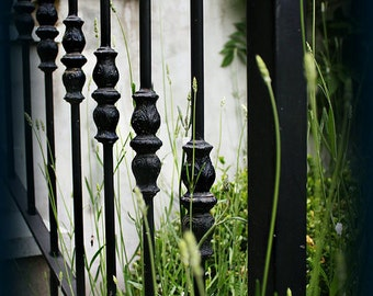 Hand Wrought Iron Railing Staircase with Green Grass, Greeting Card, Blank  Inside, Fine Art Photography, Still Life,  5x7