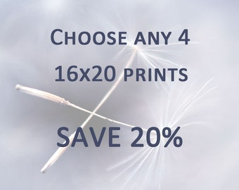 DISCOUNT PRINT SET - Any 4 16x20 Prints - Save 20%