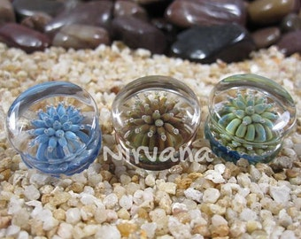"1 Pair - Exotic Colors Sea Anemone Plugs Pyrex Glass Gauges 00g 7/16"" 1/2"" 9/16"" 5/8"" 3/4"" 1"" 9.5 mm 10 mm 12 mm 14 mm 16 mm 18 mm - 25 mm"