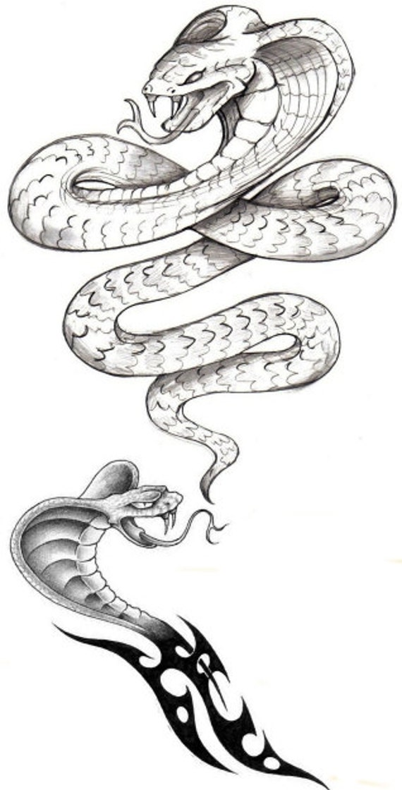 Serpent cobra temporaire faux tatouage corps gras art - Dessin de serpent cobra ...