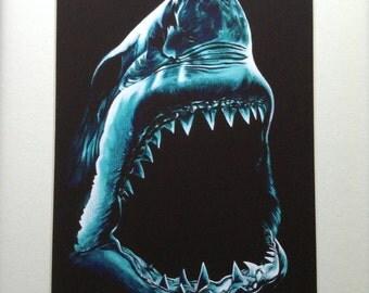 Aquamarine Great White Shark Print from original color pencil drawing