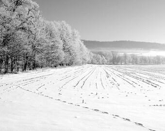 Farm in Winter,Winter Picture of Snow in Cornfield,Snow Photograph,Snowy Farm Field,Winter Photography,Black and White,Farm Field Photograph