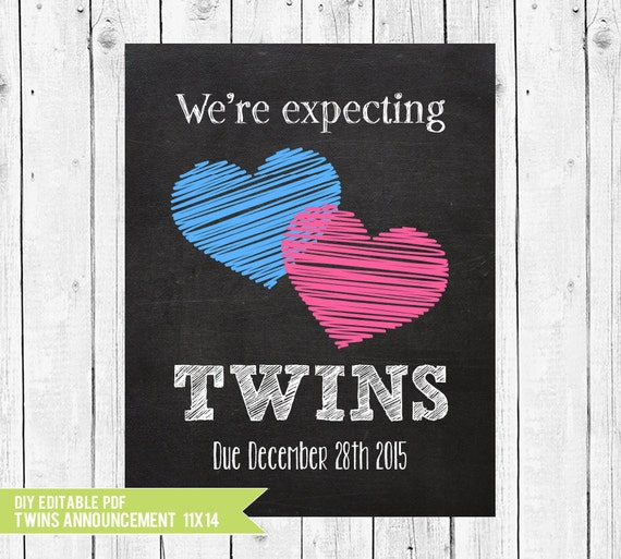 Twins Pregnancy Announcement We Re Expecting Twins