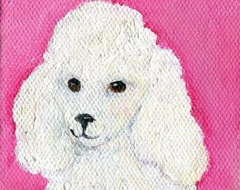 White Poodle on Pink, miniature painting, Original Poodle Dog Art, 3 x 3, pet dog painting, poodle decor, poodle art, dog painting