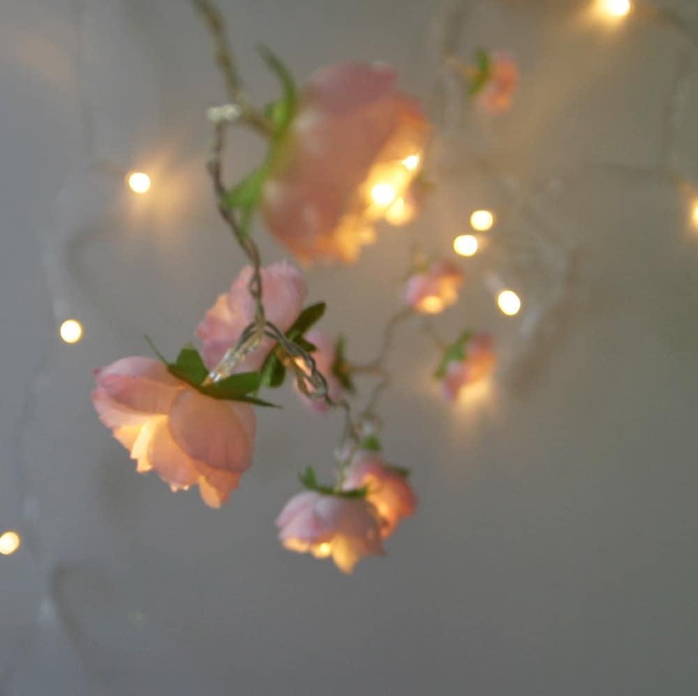 cherry blossom pink fairy lights 2015 edition rambling rose. Black Bedroom Furniture Sets. Home Design Ideas