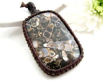 Father gift, Turritella Fossil necklace  / Fossil pendant / Fossil Jewelry / Turtle Jasper / Paleontology /  Geology / Rocks and minerals