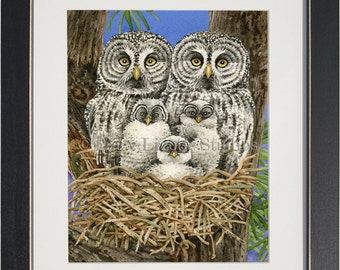 Owl Tree with Great Grey Owls- archival watercolor print by Tracy Lizotte