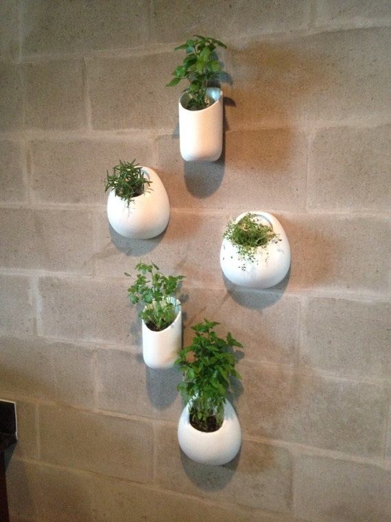 Ceramic Wall Planters Ceramic Wall Planters Set Five