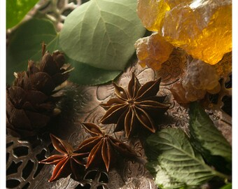 severus - botanical perfume oil - cedar, spearmint & rosemary meticulously forged to be an exercise in seduction - unisex - 1/2 oz