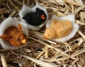 Felted Baby Chicks