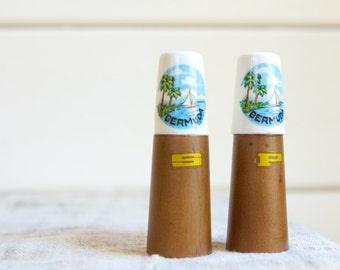 Vintage Souvenir Salt and Pepper Shakers, Bermuda