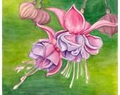 flower watercolor painting, fuchsia flowers, botanical wall art, original artwork, pink purple and green decor
