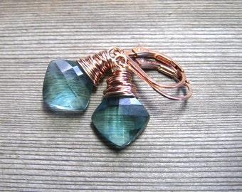 Green Amethyst Earrings,  Rose Gold,  February Birthstone Jewelry, Mint Green Drop Earrings, Prasiolite Stone, Amethyst Jewelry