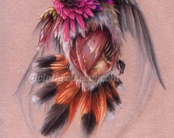 "Zombie Hummingbird Matted Original Illustration - ""Zombie Hummingbird"""