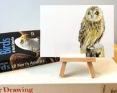 "Short-Eared Owl Postcard Art Print, Bird Illustration, Digital Drawing, Animal Wildlife Illustration  4"" x 6"" OWL2"
