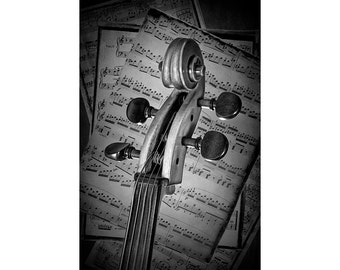 Cello Scroll a Stringed Musical Instrument with Beethoven Sheet Music either in Black & White No.BW22 Fine Art Classical Music Photography