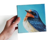 Barn Swallow art, blue bird of happiness painting, 6x6 songbird square original canvas painting