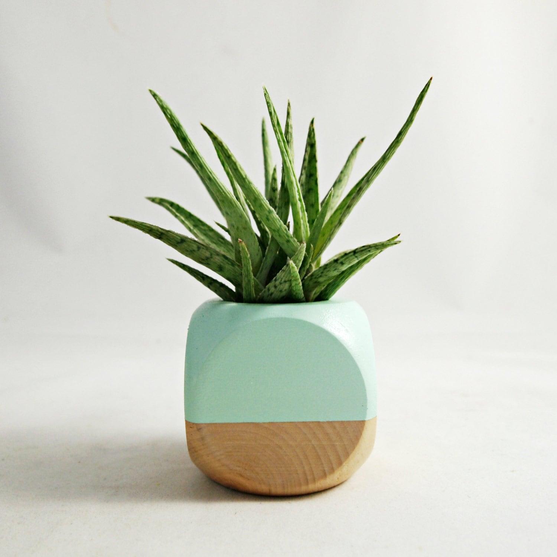 Geometric succulent cactus planter mint wood by for Wooden cactus planter