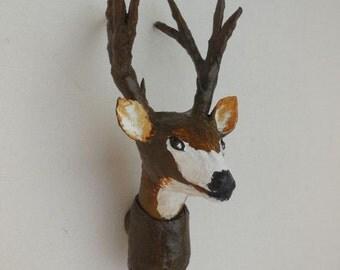 Mule Deer Buck Head Mount