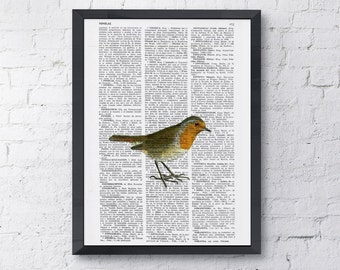 Summer Sale Dictionary book cute robin printed on Vintage Book altered art printed on  dictionary page ANI182