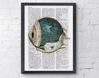 Summer Sale Eye ball human anatomy Art Print Upcycled art Print eye detail , anatomy print print, science and geek gift SKA090