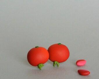 Rose Hip Post Earrings - Charming fall jewlery - Floral red earrings - Rose hip tea studs