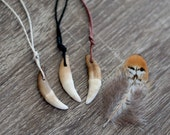 Natural Weathered Coyote Tooth Necklace on Hemp Cord