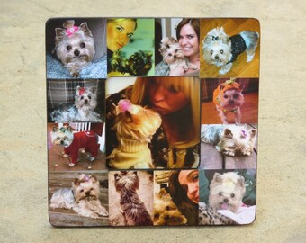 "Pet Memorial Frame, Pet Collage Picture Frame, Personalized Pet Frame, Custom Dog Frame, Cat Frame, 8"" x 8"", Unique Pet Gift, In Memory Of"