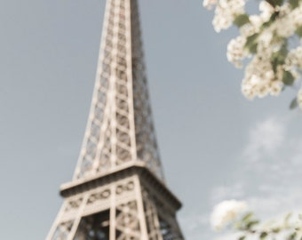 Paris Photograph - White Blossoms at the Eiffel Tower, Spring in Paris, Large Wall Art, French Home Decor