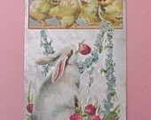 Reserved:  Beautifrul Edwardian Era Easter Postcard-Bunny with Clover and Chicks-Never Used