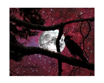 RASPBERRY NIGHT RAVEN Photo Surreal Full Moon Stars Art Print Halloween Black and Red Fantasy Forest Night Photography