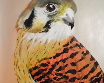 """Kestrel Falcon - Art by Ahmad Abumraighi - 11"""" x 14"""""""