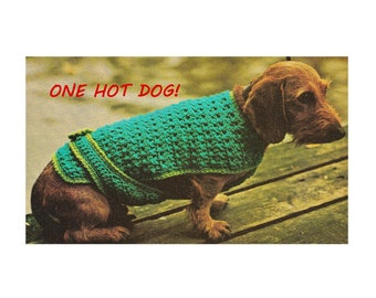 Digital Download Crochet Dog Sweater Jacket Pattern - Vintage Cold Weather Comfort Crochet Dog Coat PDF Pattern Crochet Patterns