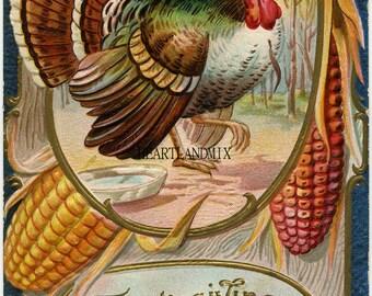 Thanksgiving Turkey Vintage Digital Image Downloadable, Printable Digital Art Image Instant Download