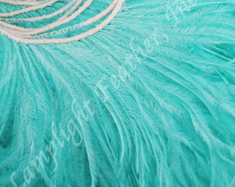 "Ostrich Fringe, Many Colors, 5-6"" long tendrils, 2 ply, Trim, dress making, crafting, sewing, wedding, per strung FOOT"