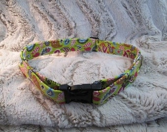 "1"" Adjustable Dog Collar in Spring Paisley"