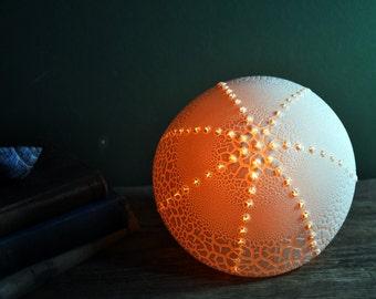 Original Urchin Lamp