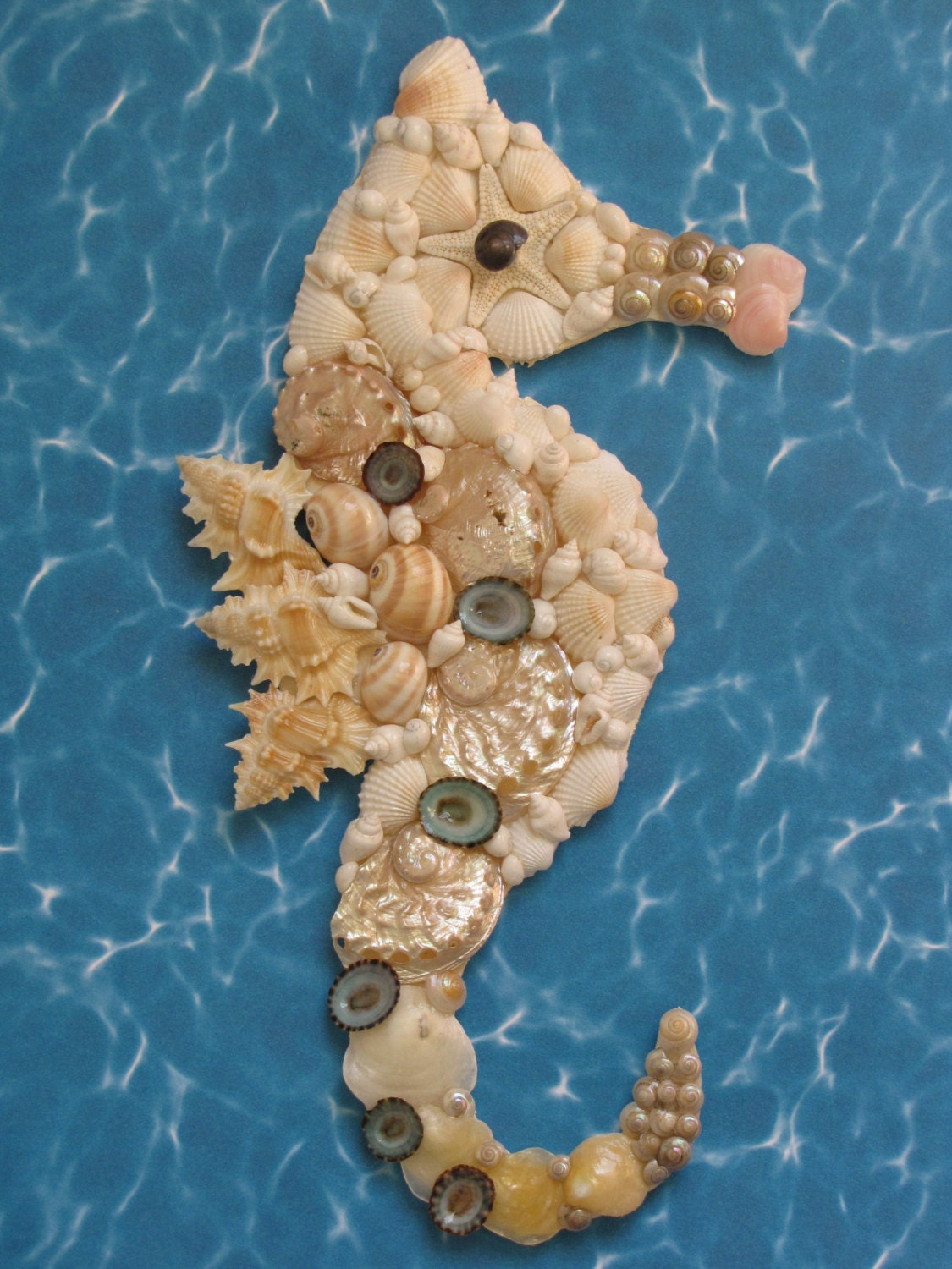 seahorse wall decor seahorse shell art beach decor. Black Bedroom Furniture Sets. Home Design Ideas