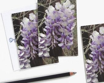 purple flower photography cards, wisteria notecard set, botanical garden stationery, nature art print card