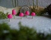Pink Mushrooms, Fairy Garden,  Miniature Garden, Terrarium Mushroom , fairy garden mushroom, terrarium decor
