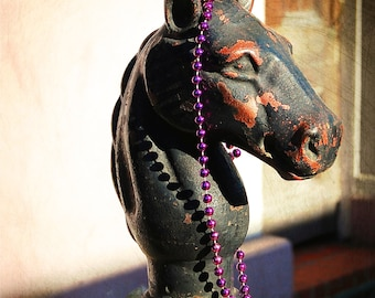 New Orleans Horse  -  Digital Photography, Horse Hitching Post, New Orleans Art, Mardi Gras Horse, Mardi Gras Hitching Post, New Orleans